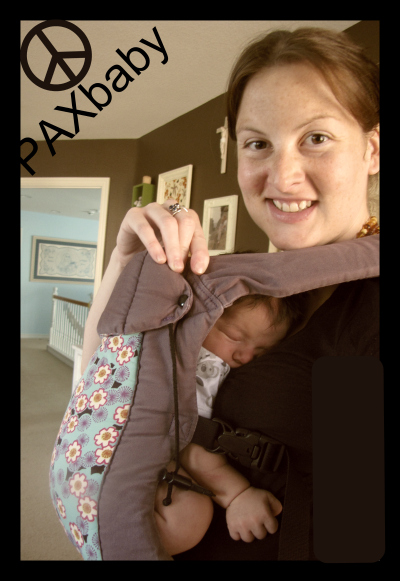 PAXbaby Beco Gemini newborn safety buckles