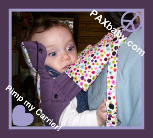 PAXbaby custom Gemini Jujube Pimp my Carrier